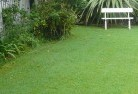 Armatree Lawn and turf 2