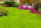 Armatree Lawn and turf 35