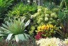 Armatree Sustainable landscaping 3