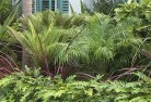 Armatree Tropical landscaping 2