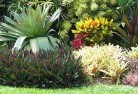 Armatree Tropical landscaping 9